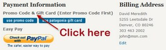 Where to enter coupon code at Patagonia.com